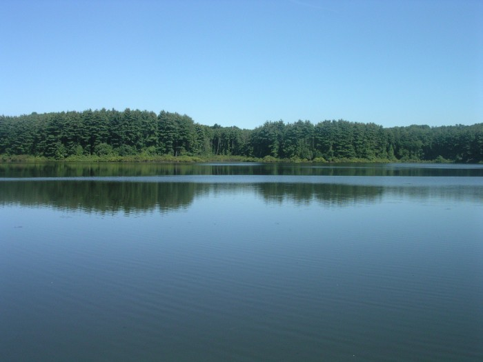 calm lake - Wilton