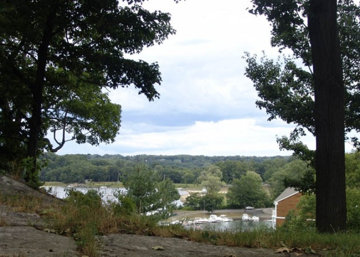 view of the town from the woods - Danbury