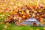 Fall-Cleaning-Tips